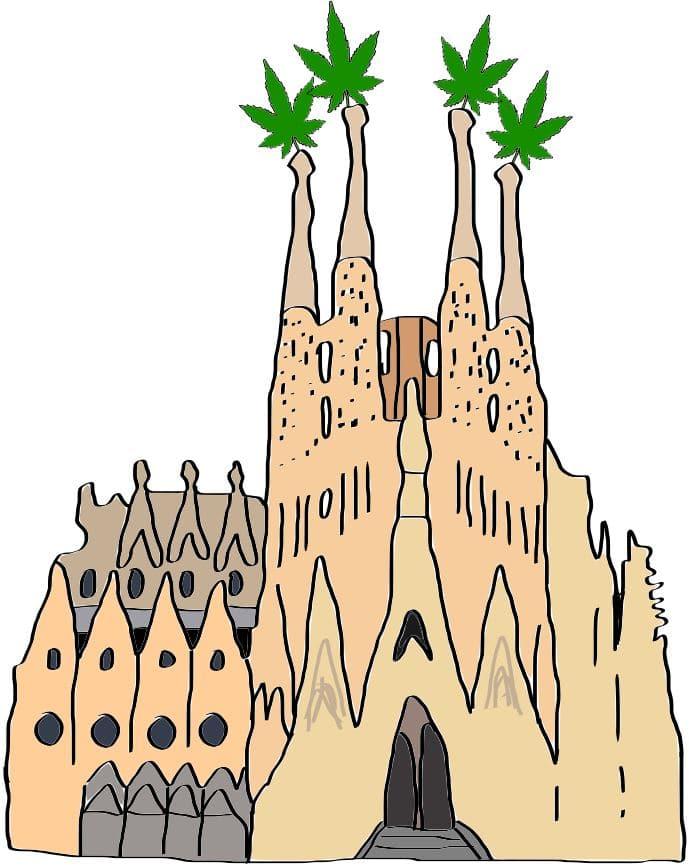 Barcelona weed